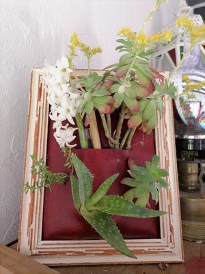 Créer un cadre vegetal