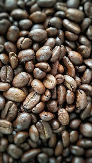 Marc de cafe jardin